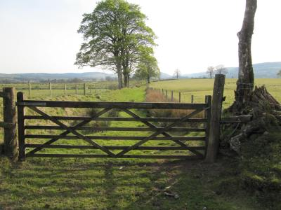 Bridleway between Llangammarch Wells and Llanwrtyd Wells.JPG